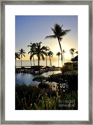 Tropical Dream Framed Print by Rosy Kueng
