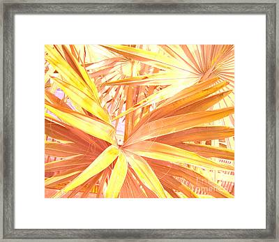 Tropical Dreams In Pastel Apricot Framed Print