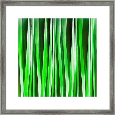 Tropical Environment Framed Print