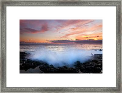 Tropical Explosion Framed Print by Mike  Dawson
