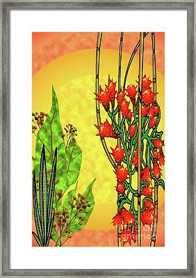 Tropical Firecracker Framed Print by Charles Pulley