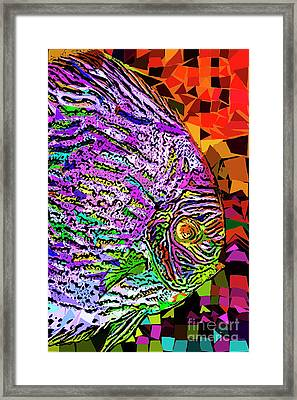 Framed Print featuring the photograph Tropical Fish Discus In Abstract 20170325v3 by Wingsdomain Art and Photography