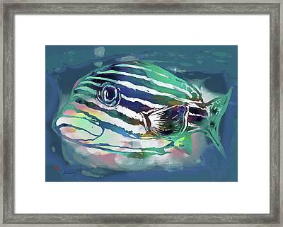 Tropical Fish - New Pop Art Poster Framed Print