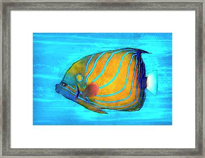 Tropical Fish Painted Framed Print