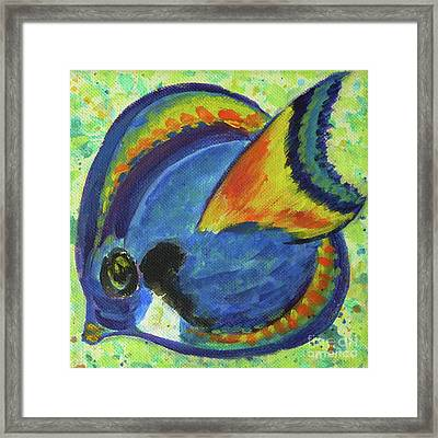 Tropical Fish Series 3 Of 4 Framed Print by Gail Kent