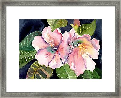 Tropical Flowers Framed Print by Janet Doggett