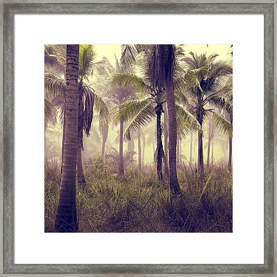 Tropical Forest Framed Print