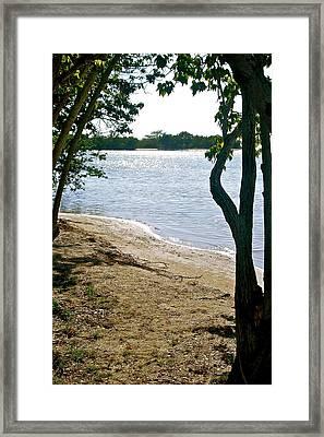 Tropical Glimpse Framed Print