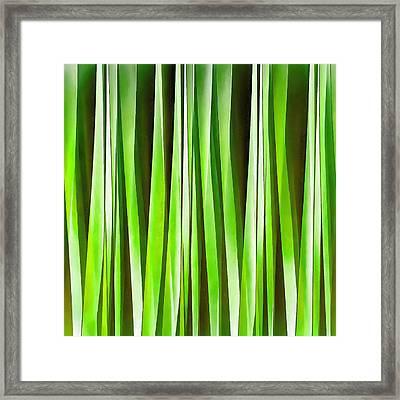 Tropical Green Riverweed Framed Print