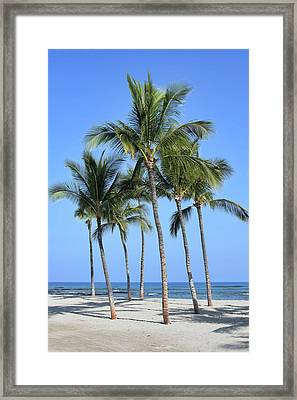 Framed Print featuring the photograph Tropical Hawaiian Day by Pamela Walton
