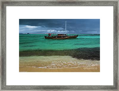 Tropical Illusions Framed Print