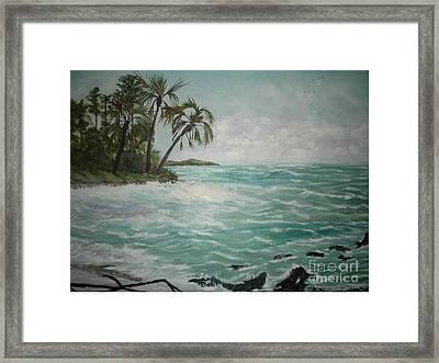 Tropical Island Framed Print by Hal Newhouser