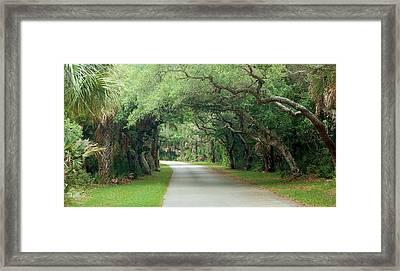 Tropical Magic Forest Framed Print