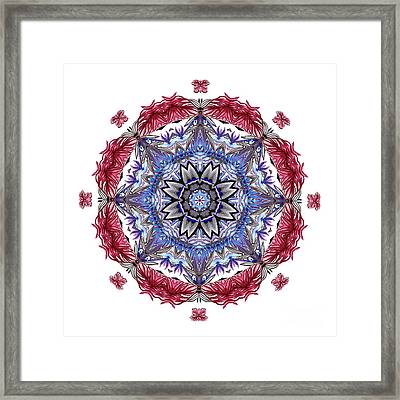 Tropical Mandala By Kaye Menner Framed Print