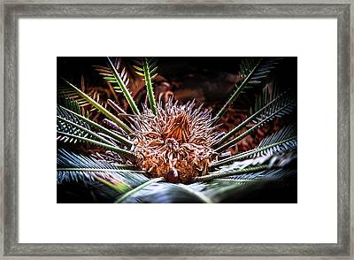 Framed Print featuring the photograph Tropical Moments by Karen Wiles