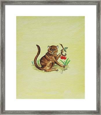 Tropical Monkey 1 Framed Print by John Keaton
