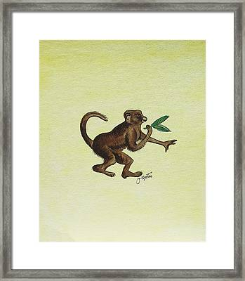 Tropical Monkey 2 Framed Print by John Keaton