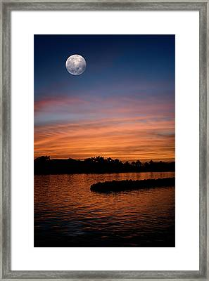 Tropical Moon Framed Print by Laura Fasulo