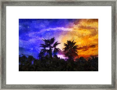 Tropical Night Fall Framed Print by Francesa Miller