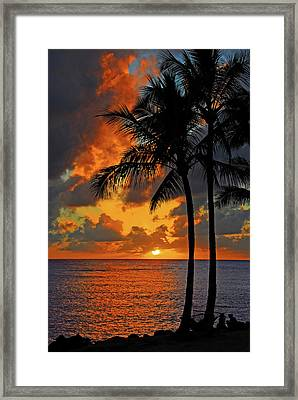 Tropical Nights  Framed Print by Lynn Bauer