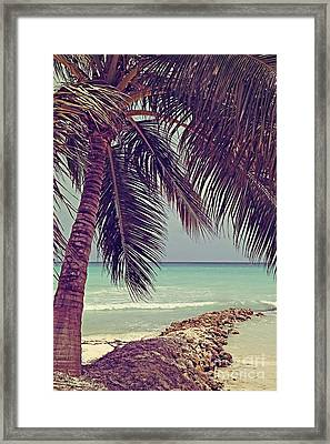 Tropical Ocean View Framed Print