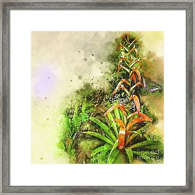 Tropical Orange Framed Print