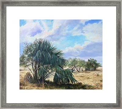 Tropical Orange Grove Framed Print