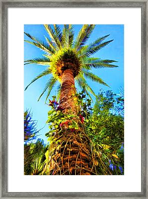 Tropical Palm Tree Painting Framed Print by Tracie Kaska