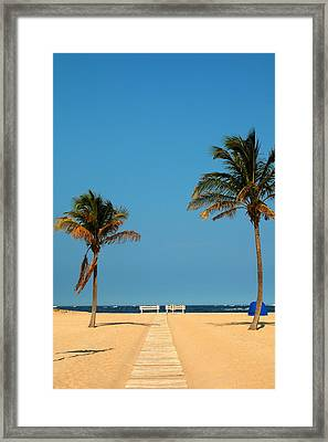 Tropical Paradise Framed Print by Mandy Wiltse