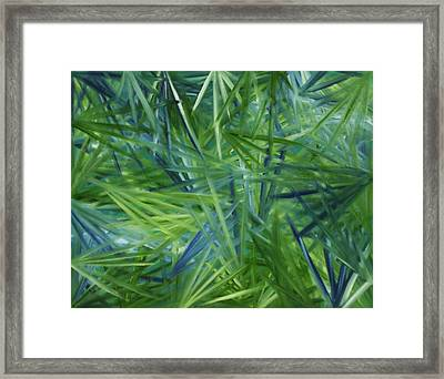 Tropical Point Of View Framed Print by Karen Rester