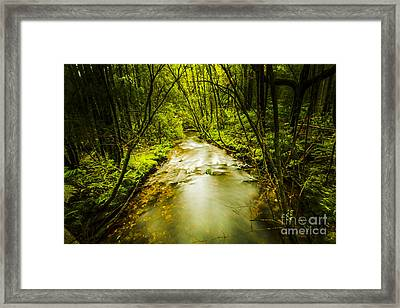 Tropical Rainforest Stream Framed Print