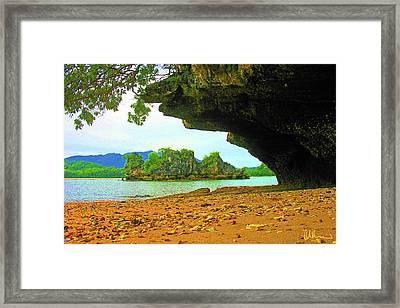 Tropical Secrets Framed Print by John Brennan
