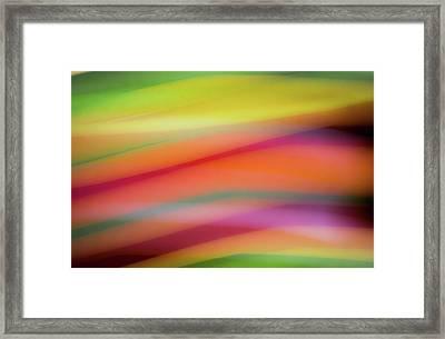 Tropical Sherbet Framed Print