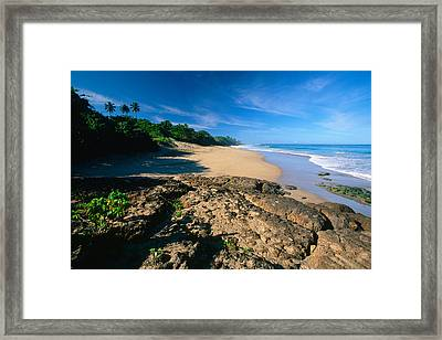 Tropical Shoreline Borinquen Point Puerto Rico Framed Print by George Oze