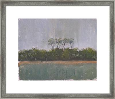 Tropical Storm Framed Print by Patricia Caldwell