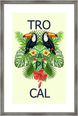 Tropical Summer  Framed Print