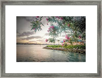 Tropical Sunset Framed Print by Rick Grossman