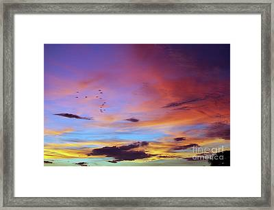 Tropical North Queensland Sunset Splendor  Framed Print
