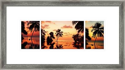 Tropical Sunset. Triptych Framed Print by Jenny Rainbow