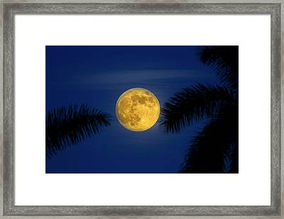 Tropical Supermoon Framed Print