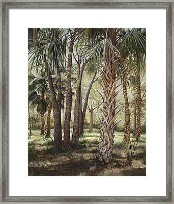 Tropical Trail's End Framed Print