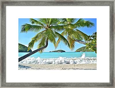 Tropical Treat Framed Print by Frozen in Time Fine Art Photography