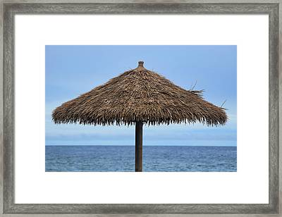 Framed Print featuring the photograph Tropical Umbrella by Pamela Walton