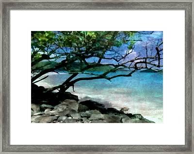Tropical Utopia  Framed Print