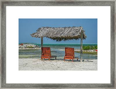 Tropical Vacation Framed Print by Patricia Hofmeester