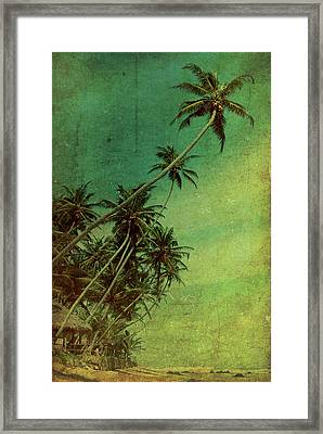Tropical Vestige Framed Print by Andrew Paranavitana