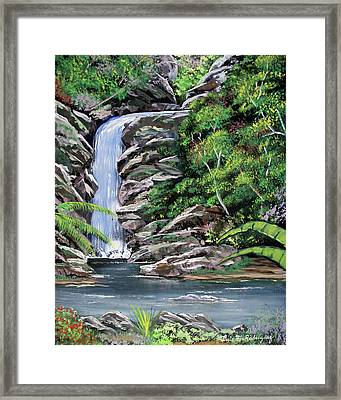 Tropical Waterfall 2 Framed Print by Luis F Rodriguez