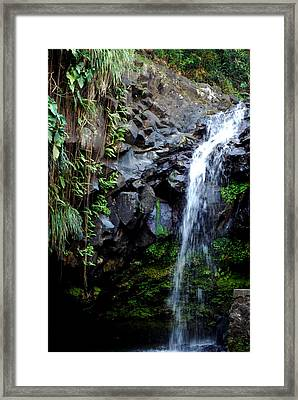 Tropical Waterfall Framed Print by Gary Wonning