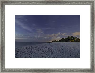 Tropical Winter Framed Print