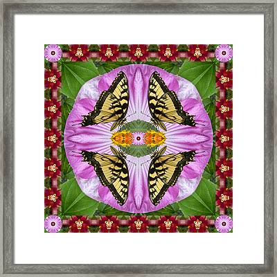 Tropicana Framed Print by Bell And Todd